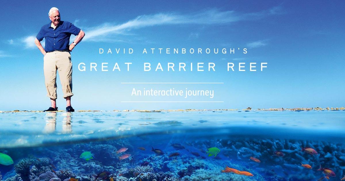 coral reef save